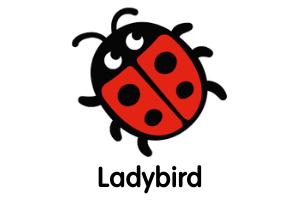 Ladybird Books for Website